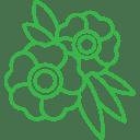 003-flowers